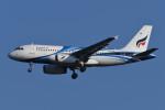 いもや太郎さんが、スワンナプーム国際空港で撮影したバンコクエアウェイズ A319-132の航空フォト(写真)