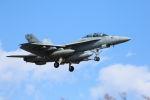 モッチーさんが、厚木飛行場で撮影したアメリカ海軍 F/A-18F Super Hornetの航空フォト(写真)