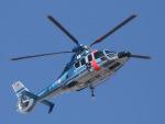 丸めがねさんが、東京ヘリポートで撮影した警視庁 EC155B1の航空フォト(写真)