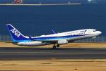 りんたろうさんが、羽田空港で撮影した全日空 737-881の航空フォト(写真)