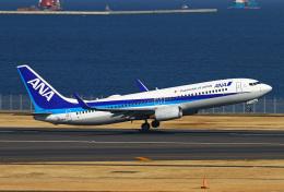 りんたろうさんが、羽田空港で撮影した全日空 737-881の航空フォト(飛行機 写真・画像)