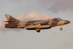 マリオ先輩さんが、厚木飛行場で撮影したATAC Hunter F.58の航空フォト(写真)