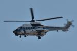 NFファンさんが、厚木飛行場で撮影した海上保安庁 AS332L1 Super Pumaの航空フォト(写真)