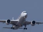 とりてつさんが、成田国際空港で撮影したフィンエアー A350-941XWBの航空フォト(写真)