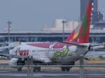 とりてつさんが、成田国際空港で撮影したティーウェイ航空 737-8Q8の航空フォト(写真)