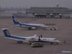 くまのんさんが、中部国際空港で撮影した全日空 737-781の航空フォト(写真)