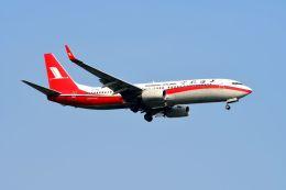 まいけるさんが、スワンナプーム国際空港で撮影した上海航空 737-86Dの航空フォト(写真)