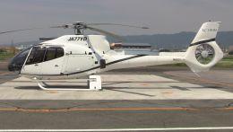 cathay451さんが、八尾空港で撮影したオートパンサー EC130B4の航空フォト(飛行機 写真・画像)