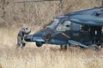 go44さんが、名古屋飛行場で撮影した航空自衛隊 UH-60Jの航空フォト(写真)