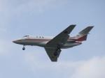 ユターさんが、芦屋基地で撮影した航空自衛隊 U-125 (BAe-125-800FI)の航空フォト(写真)