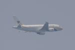 eagletさんが、シンガポール・チャンギ国際空港で撮影したミャンマー国際航空 A319-111の航空フォト(写真)