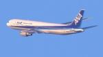 撮り撮り人さんが、岡山空港で撮影した全日空 767-381の航空フォト(写真)