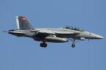 isiさんが、厚木飛行場で撮影したアメリカ海軍 F/A-18F Super Hornetの航空フォト(写真)