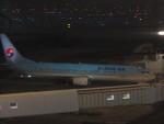 flyflygoさんが、福岡空港で撮影した大韓航空 737-9B5の航空フォト(写真)