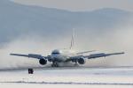 makorigeさんが、函館空港で撮影した日本航空 767-346/ERの航空フォト(写真)