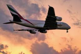 yoshibouさんが、成田国際空港で撮影したエミレーツ航空 A380-861の航空フォト(飛行機 写真・画像)