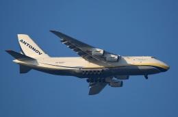リリココさんが、中部国際空港で撮影したアントノフ・エアラインズ An-124-100 Ruslanの航空フォト(飛行機 写真・画像)