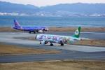 Fuseyaさんが、関西国際空港で撮影したエバー航空 A321-211の航空フォト(写真)