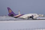 かずまっくすさんが、新千歳空港で撮影したタイ国際航空 747-4D7の航空フォト(写真)
