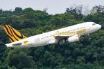 Ariesさんが、シンガポール・チャンギ国際空港で撮影したスクート A319-132の航空フォト(写真)