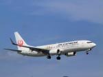 katsuura.Dさんが、徳島空港で撮影したJALエクスプレス 737-846の航空フォト(写真)