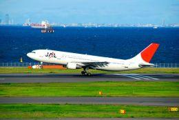 まいけるさんが、羽田空港で撮影した日本航空 A300B4-622Rの航空フォト(写真)