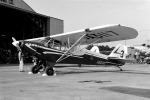 小金井原住民さんが、調布飛行場で撮影した航空大学校 Piperの航空フォト(写真)