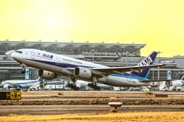 SGR RTさんが、羽田空港で撮影した全日空 777-281の航空フォト(飛行機 写真・画像)