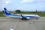 FlyHideさんが、仙台空港で撮影した全日空 737-881の航空フォト(写真)