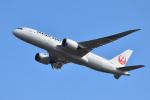saoya_saodakeさんが、成田国際空港で撮影した日本航空 787-8 Dreamlinerの航空フォト(写真)
