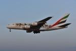 よしポンさんが、成田国際空港で撮影したエミレーツ航空 A380-861の航空フォト(写真)
