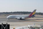 eagletさんが、成田国際空港で撮影したアシアナ航空 A380-841の航空フォト(写真)