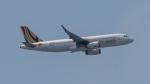 2wmさんが、シンガポール・チャンギ国際空港で撮影したスクート A320-232の航空フォト(写真)