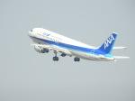 kayさんが、羽田空港で撮影した全日空 A320-211の航空フォト(写真)