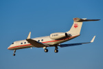 パンダさんが、成田国際空港で撮影した不明 G-V-SP Gulfstream G550の航空フォト(飛行機 写真・画像)