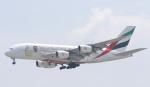 Seiiさんが、シンガポール・チャンギ国際空港で撮影したエミレーツ航空 A380-861の航空フォト(写真)