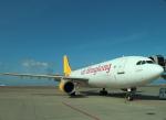 STAR TEAMさんが、中部国際空港で撮影したエアー・ホンコン A300F4-605Rの航空フォト(写真)