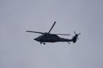神宮寺ももさんが、名古屋飛行場で撮影した航空自衛隊 UH-60Jの航空フォト(写真)