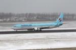 もぐ3さんが、新潟空港で撮影した大韓航空 737-9B5/ER の航空フォト(写真)