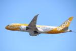 水月さんが、関西国際空港で撮影したスクート 787-8 Dreamlinerの航空フォト(写真)