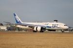 てくてぃーさんが、松山空港で撮影した全日空 787-8 Dreamlinerの航空フォト(飛行機 写真・画像)