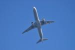 turenoアカクロさんが、高山航空公園で撮影した全日空 A321-211の航空フォト(写真)