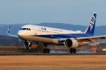 SKY KOCHIさんが、高知空港で撮影した全日空 A321-272Nの航空フォト(写真)