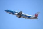 水月さんが、関西国際空港で撮影した日本トランスオーシャン航空 737-4Q3の航空フォト(写真)