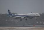 だいまる。さんが、岡山空港で撮影した全日空 A321-211の航空フォト(写真)