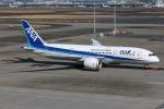 えぬえむさんが、羽田空港で撮影した全日空 787-8 Dreamlinerの航空フォト(写真)