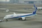 chappyさんが、羽田空港で撮影した全日空 787-9の航空フォト(写真)