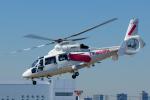 よっしぃさんが、東京ヘリポートで撮影した東邦航空 AS365N2 Dauphin 2の航空フォト(写真)