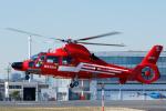 よっしぃさんが、東京ヘリポートで撮影した東京消防庁航空隊 AS365N3 Dauphin 2の航空フォト(写真)