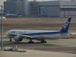 さゆりんごさんが、羽田空港で撮影した全日空 777-381/ERの航空フォト(写真)